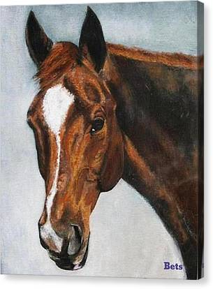 Horse Art Portrait Of Horse Maduro Canvas Print by Bets Klieger