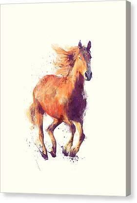 Fauna Canvas Print - Horse // Boundless by Amy Hamilton
