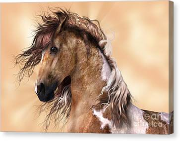 Horse Brown And White Paint Canvas Print