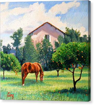 Horse By The Signalman's House Canvas Print by Brian King