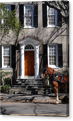 Horse Carriage In Charleston Canvas Print