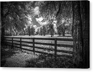 Canvas Print featuring the photograph Horse Country by Louis Ferreira