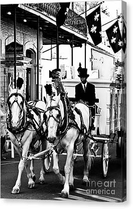 Horse Drawn Funeral Carriage Canvas Print by Kathleen K Parker