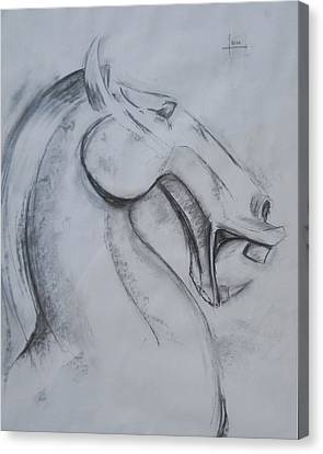 Horse Face Canvas Print by Victor Amor