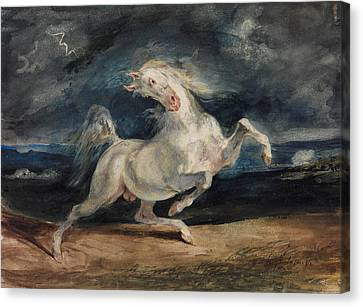 Horse Frightened By Lightning  Canvas Print