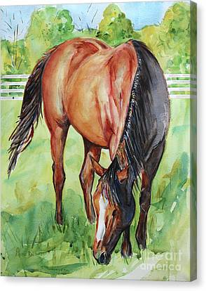 Bay Horse Canvas Print - Horse Grazing by Maria's Watercolor