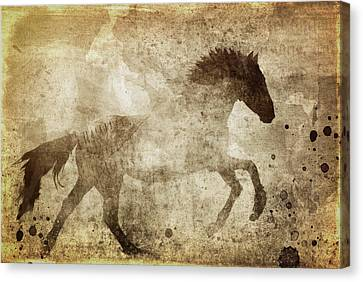 Horse Grunge Canvas Print by Dan Sproul