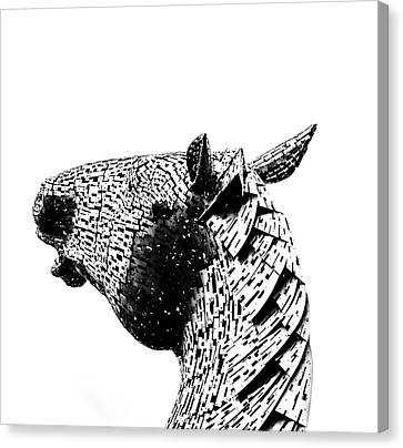 Horse Head. Canvas Print by Angela Aird