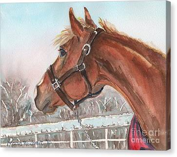 Chestnut Horse Canvas Print - Horse Head Painting In Watercolor by Maria's Watercolor
