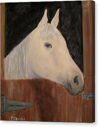 Horse In Stall Canvas Print