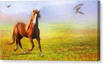 Horse On The Prairie Canvas Print by Georgiana Romanovna