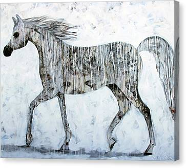 Horse Paint Canvas Print by Lance Headlee
