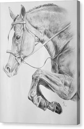 Jumping Horse Canvas Print - Horse Pencil Drawing by Arion Khedhiry