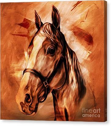 Horse Portrait 092 Canvas Print