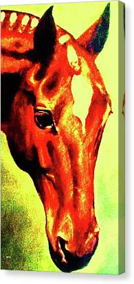 horse portrait RED shadows Canvas Print by Bets Klieger