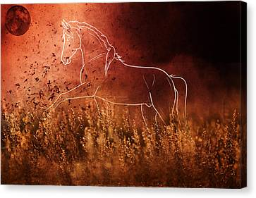 Profile Canvas Print - Horse Running In Field by Art Spectrum