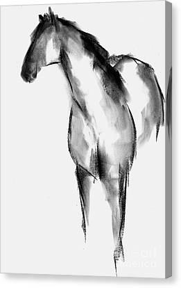 Horse Sketch Canvas Print