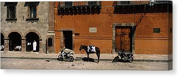Horse Standing Between Two Motorcycles Canvas Print by Panoramic Images