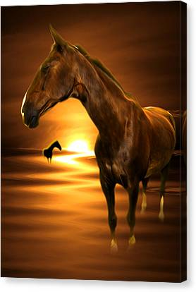 Horse Canvas Print by Svetlana Sewell