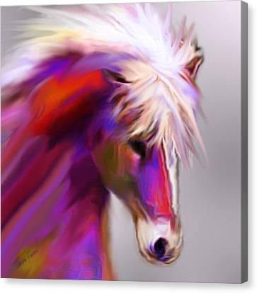Horse True Colors Canvas Print by Jackie Flaten