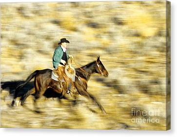 Horseback Rider Canvas Print by Inga Spence