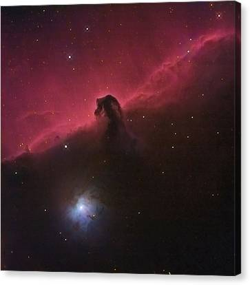 Horsehad Nebula II Canvas Print by Charles Warren
