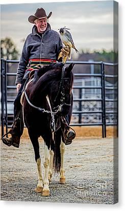Horseman With Gyr Falcon 4731vt Canvas Print