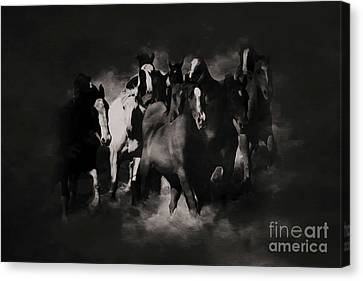 Horses Black And White Painting Canvas Print by Gull G