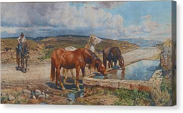 Horses Drinking From A Stone Trough, By Enrico Coleman Canvas Print by MotionAge Designs