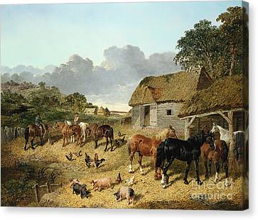 Horses Drinking From A Water Trough, With Pigs And Chickens In A Farmyard Canvas Print by John Frederick Herring Jr