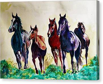 Horses In Wild Canvas Print