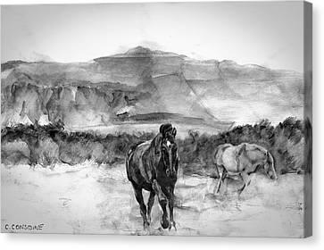 Horses Near Sybil Head West Kerry Ireland On The Wild Atlantic Way Canvas Print