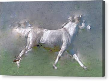 Canvas Print - Horses On The Move by Patricia Keller