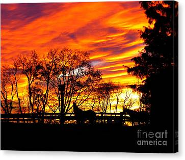 Horses Under A Painted Sky Canvas Print