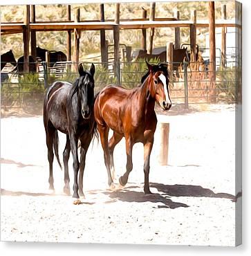Horses Unlimited_6a Canvas Print