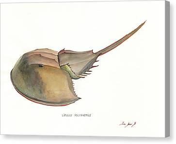 Crabs Canvas Print - Horseshoe Crab by Juan Bosco