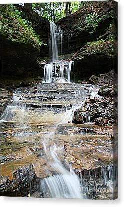 Horseshoe Falls #6735 Canvas Print by Mark J Seefeldt