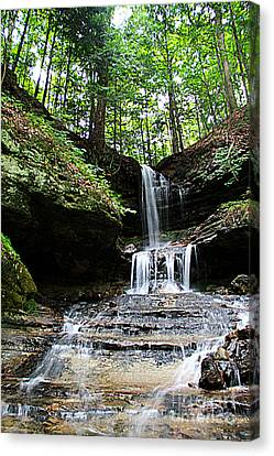 Horseshoe Falls #6736 Canvas Print