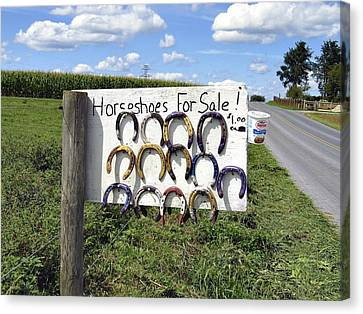 Horseshoes For Sale Canvas Print