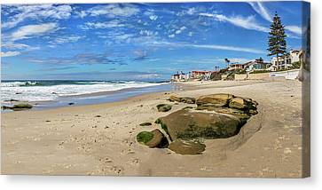 Horseshoes Canvas Print by Peter Tellone
