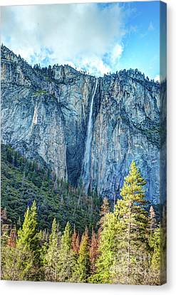 Canvas Print - Horsetail Fall Yosemite National Park by Terry Garvin