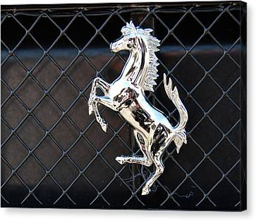 Canvas Print featuring the photograph Horsey by John Schneider