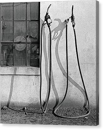 Canvas Print featuring the painting Hoses by Peter J Sucy