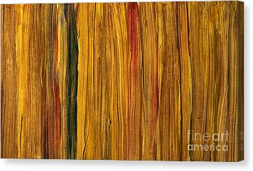Hot African Evening Canvas Print by Igor Kislev