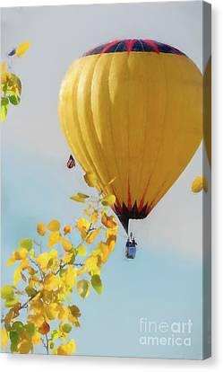 Hot Air Balloon Flying Canvas Print by Dan Friend