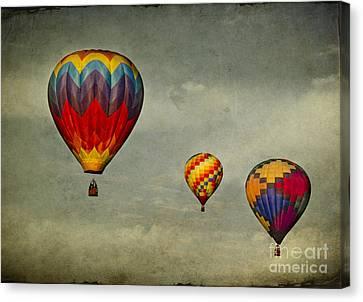 Hot Air Balloons Canvas Print by Elena Nosyreva