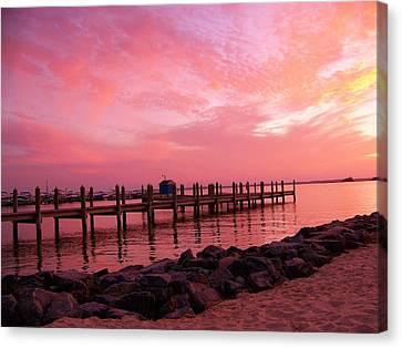 Hot Bay Sunset Canvas Print by Trish Tritz
