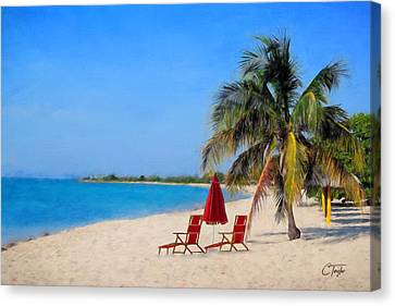 Hot Fun In The Summertime  Canvas Print