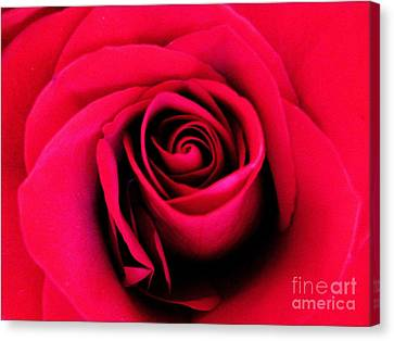 Hot Lips Canvas Print by Molly McPherson