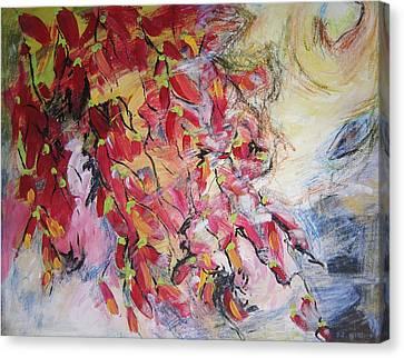 Hot Pepper Drying Canvas Print